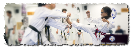 World Taekwondo Institute